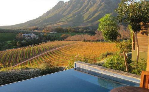 Cape Wine Route Africa Revealed