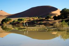 Namibia Africa Revealed