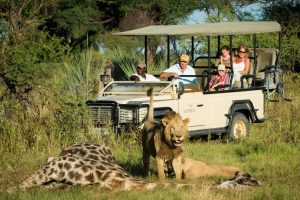 Safari Africa Revealed